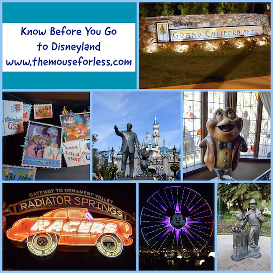 Know Before You Go to Disneyland