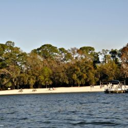 Fort Wilderness Resort and Campground Recreation