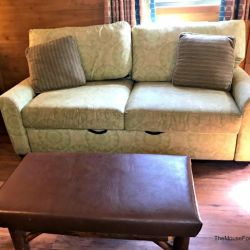 Fort Wilderness Pull Out Couch