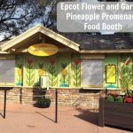 Epcot Flower and Garden-Pineapple Promenade