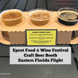 Epcot Food & Wine Festival - Craft Beer Booth