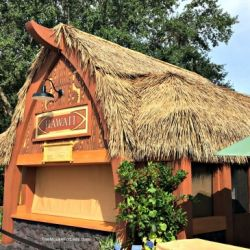 Epcot Food & Wine Festival - Hawaii Booth
