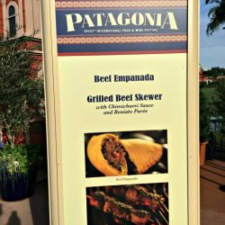 Epcot Food & Wine Festival - Patagonia Booth