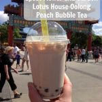 Epcot Flower and Garden-Lotus House