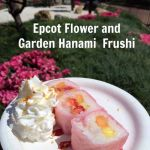 Epcot Flower and Garden Hanami