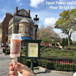 Epcot Flower and Garden-Fleur De Lys