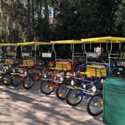 Wilderness Lodge Bike Rental