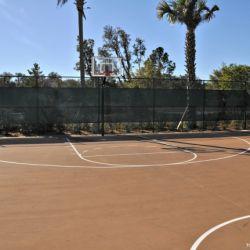 Animal Kingdom Villas Basketball Court