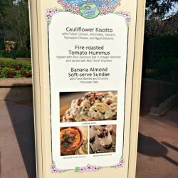 Epcot Food & Wine Festival - Almond Orchard Booth