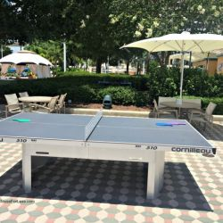 Contemporary Resort Ping Pong Table