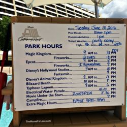 Contemporary Resort Recreation Activity Times