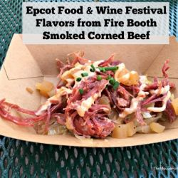 Epcot Food & Wine Festival - Flavors from Fire Booth