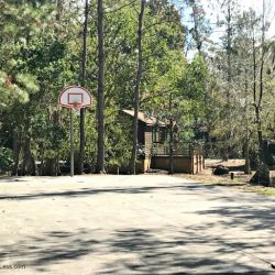 Fort Wilderness Resort and Campground Basketball