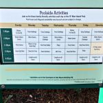 Port Orleans Riverside Pool Activities