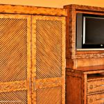 Animal Kingdom TV and Closet