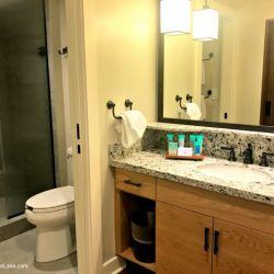 Deluxe Studio Bathroom and Sink